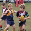 Under 8 Blue Mid Season Carnival 24.6.12