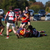 2012 Week 1 finals - Reserves Diggers v Riddell 2.9.2012
