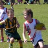 Under 10 White V Maroochydore 4.8.13