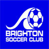 Brighton Flying Banshees Logo