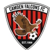 CAMDEN FALCONS UNDER 9 WHITE Logo