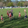 2015 Evans Petroleum Cup Gippsland Junior Interleague Carnival
