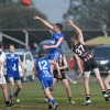 2015_Round 17  Penola - Junior Colts