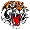 Yarrawarrah Tigers Senior Baseball & Softball Club
