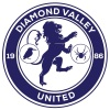 Diamond Valley United SC Orange Logo