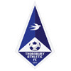 Thornbury Athletic FC Logo