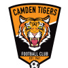 CAMDEN TIGERS UNDER 9 SILVER Logo