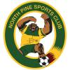 North Pine Over 45 Silverbacks Logo