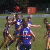2016 Division Two Round 5 v Randwick City at the Village Green