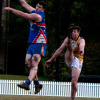 2016 Premier Division Round 8 v East Coast Eagles at the Village Green