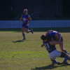 2016 Division Five Round 8 v Holroyd-Parramatta at Village Green