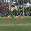 2016 Week 1 (Reserves) (1) Diggers v Macedon 27.08.16