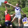 2017 P2 Diggers (Reserves)  v Sunbury Lions  25.3.17
