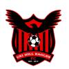 Uni Hill Eagles FC Logo