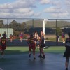 2017 R9 Wallan v Diggers (Netball selection by Hugh) (2) 24.6.17
