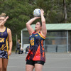 2017 Week 2 Finals (Nertball B) (2) Rupertswood v Diggers 2.9.17