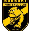 Bunbury Bulldogs Gold Y7-9 Logo