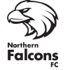 Northern Falcons SC Red Logo