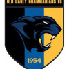 Old Carey Logo
