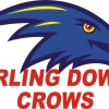 Darling Downs Crows