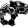 Ballarat North United SC Logo