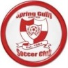 Spring Gully United SC Logo