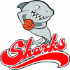 Sharks Attack Logo